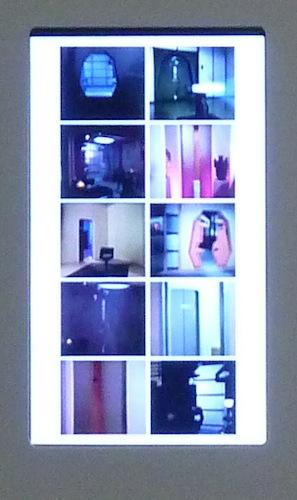 Nudashank - Dina Kelberman 2013 2 detail