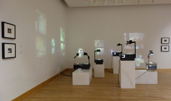 Katherine Sifers, installation view